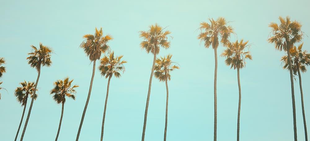 La guía fundamental para un fin de semana en Los Ángeles